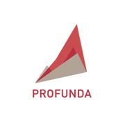 20131209 Profunda logo